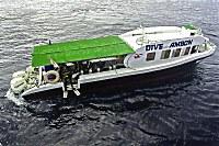 Tauchboot von Dive Into Ambon