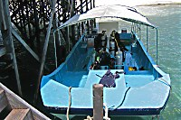 Tauchboot Maratua Paradise Dive Center