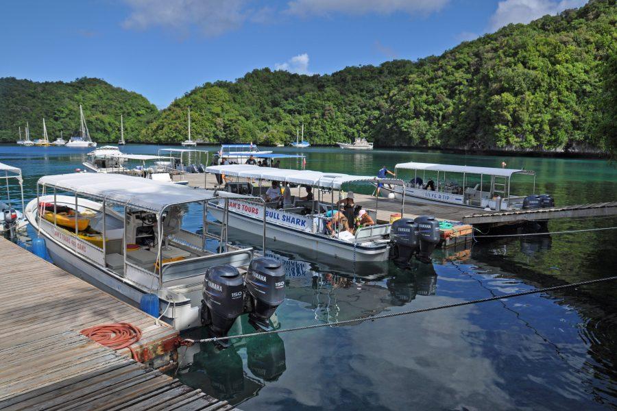 Tauchboot von Sams Tours