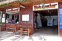 SeaQuest Bohol