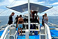 Southern Leyte Divers