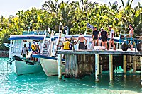 Tauchdhonis des Filitheyo Island Resorts