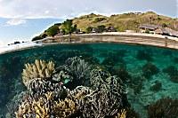 Hausriff des Komodo Resort